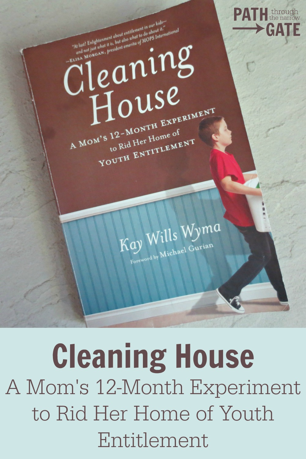 Cleaning House pin