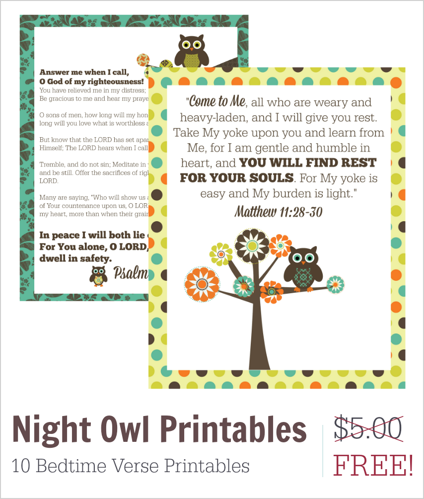 Night Owl 1 Store
